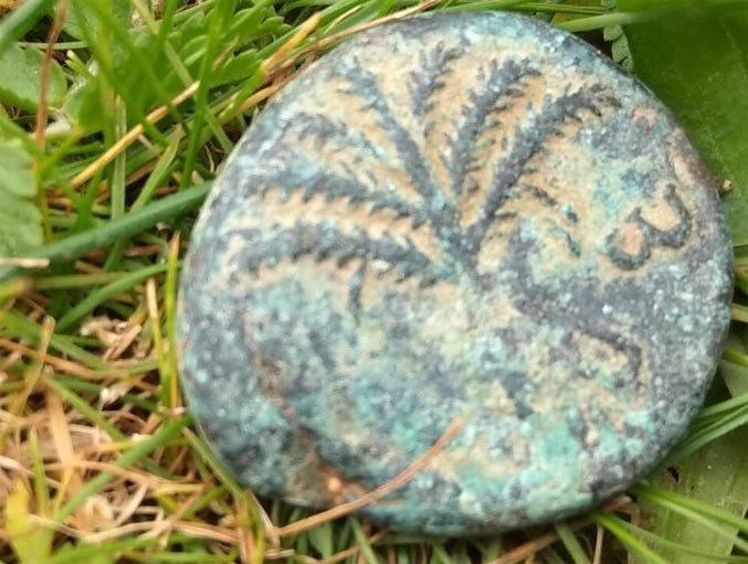 Древняя монета эпохи восстания Бар-Кохбы