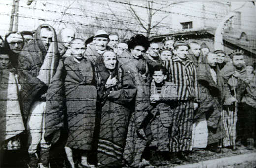 genocide in germany 1933 1945 essay